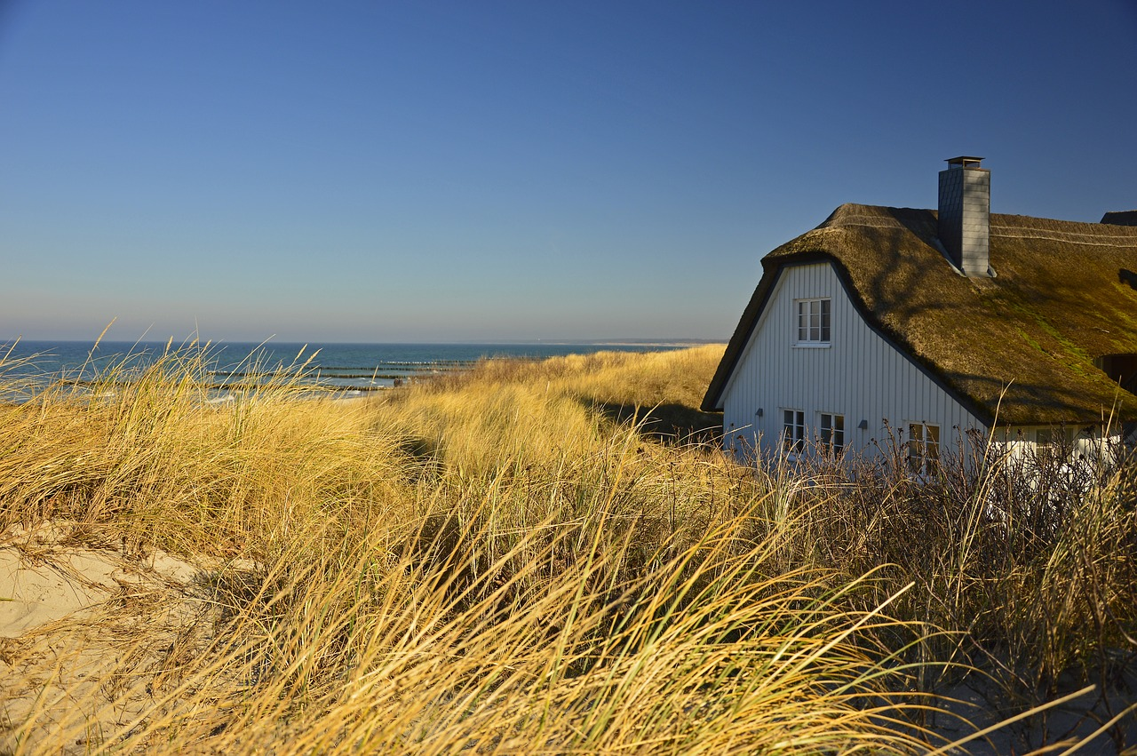 house, thatched cottage, dune-4028391.jpg